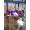 鹅苗养殖行情|鹅苗孵化场|鹅苗孵化基地