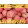 15265996373红富士苹果产地行情价格