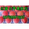 产地直销精品红富士苹果18769991603