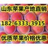 今日山东苹果价格纸袋苹果价格膜袋苹果价格多钱