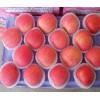 山东红富士苹果产地批发供应价格