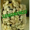 13561923622山东生姜产地批发市场