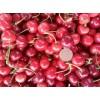 山东有机纯天然大樱桃供应