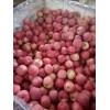 红富士苹果产地批发多少钱