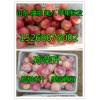 山东苹果价格嘎啦苹果价格全国苹果价格