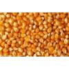 饲料厂求购玉米大豆麸皮高粱等