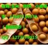 玉米价格走势 哪里收购玉米垄上养殖厂收购玉米大豆高粱